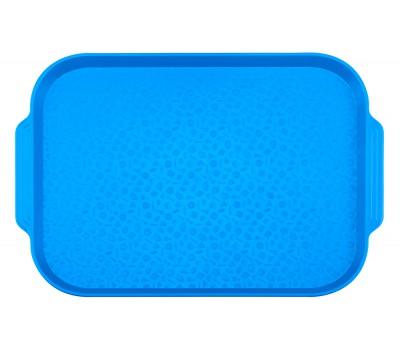 Поднос столовый 450х355 с ручками синий ви02