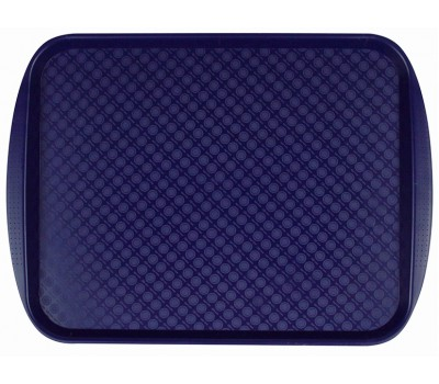 Поднос синий (450*350мм) 422106617